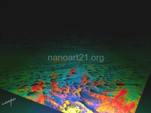 Carol Cooper - Nano Vista